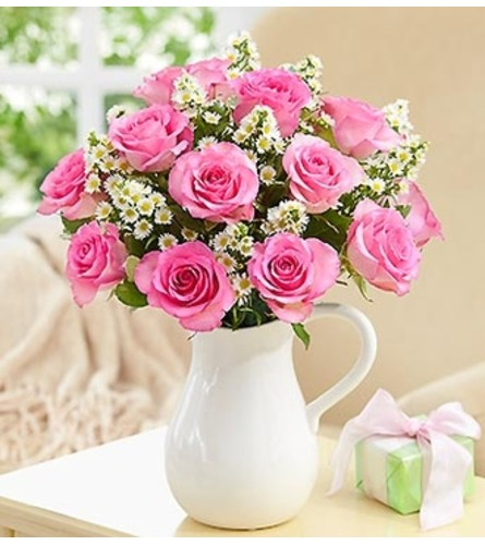Pitcher Full of Roses, Pink