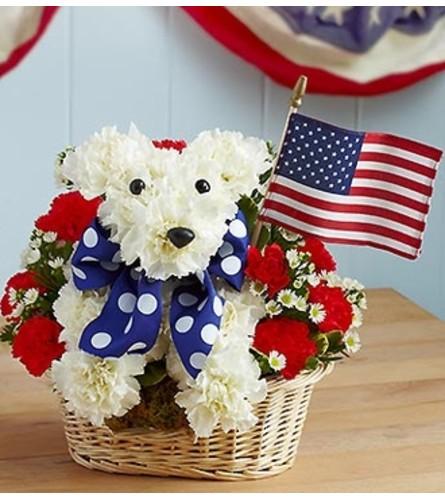 Yankee Doodle Doggie™