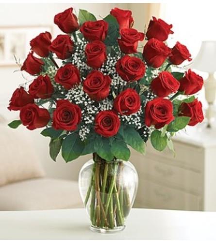 Rose Elegance- 24 red
