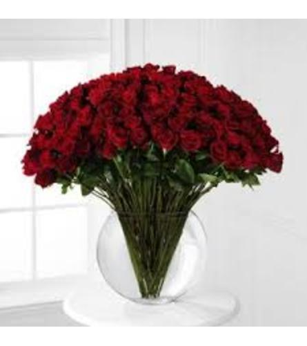 Breathless Luxury Rose