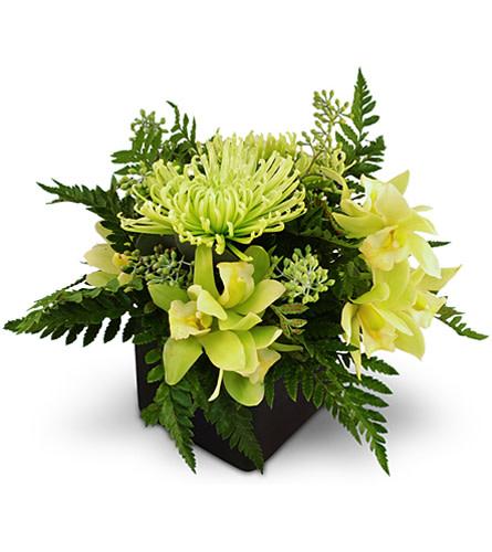 Emerald Jubilee