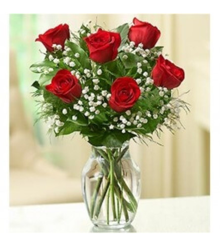 Rose Elegance™ Premium Red Roses - 1/2 Dozen