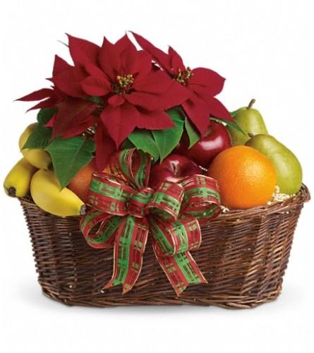 Fruit and Poinsettia Basket