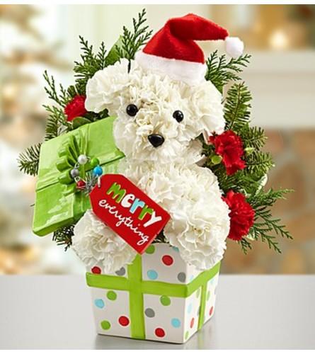 Santa Paws™ in a Gift Box