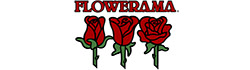 Flowerama San Antonio - Flower Delivery in San Antonio, TX
