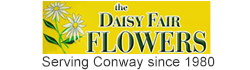 The Daisy Fair Flowers - Flower Delivery in Conway, SC