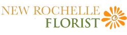 New Rochelle Florist - Flower Delivery in New Rochelle, NY