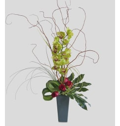 Houston Tx Florist Free Flower Delivery In Houston Tx