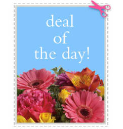 Kitchener ON Florist - FREE Flower Delivery in Kitchener ON