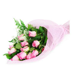Pink cupid winnipeg