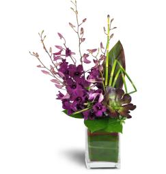 cee37018 Philadelphia Florist - FREE Flower Delivery in Philadelphia - Old ...