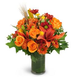 Sweet Blossoms Free Flower Delivery In Davie Fl Davie Fl