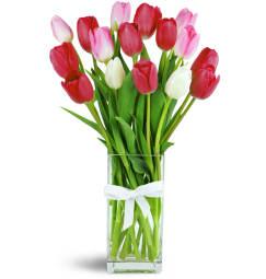 Always In Bloom Free Flower Delivery In Spring Tx Spring Tx Florist