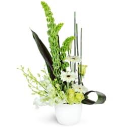 White flowers lisas floral shoppe newville pa florist cool breeze mightylinksfo