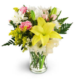 Free Flower Delivery In Madison By Your Local Florist