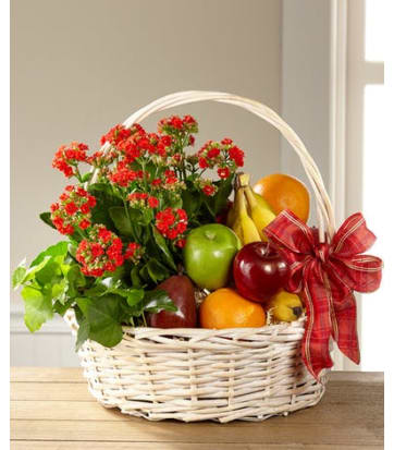 Gift Baskets   Flowers of Charlotte
