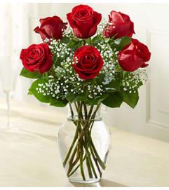 Premium 6 Rose Vase