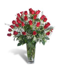 Four Dozen Premium Roses 2019