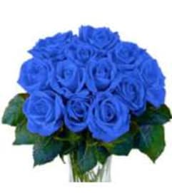 Blue roses in love