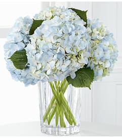 THE FTD JOYFUL INSPIRATIONS BOUQUET BY VERA WANG