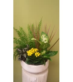 Round Mixed Tropical Planter