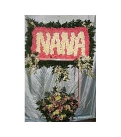 Nana  GF-SW2