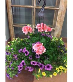 Outdoor Hanging English Garden