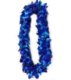 Pick Up Only! Please Call to Order In Advance - Blue (Double) Den