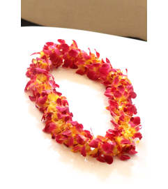 Pick Up Only Oder in Advance- Yellow (Double) Orchid Lei