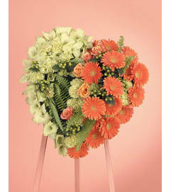 Orange Gerbera DAisy and Green Viburnum Heart  SF90-11