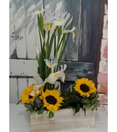 Sunny Summer Box