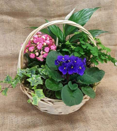 European Garden Basket