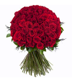 100 ROSE FOR YOU