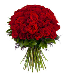 50 ROSE FOR YOU