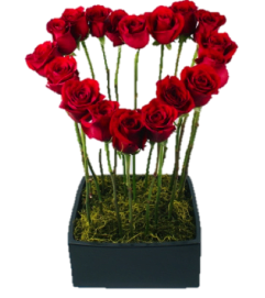 Heart Shape Red Roses