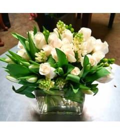 Spring White blooms