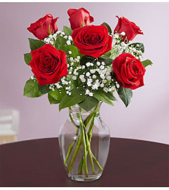 Love's Embrace™ Red Roses - 6 RED Roses
