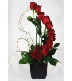 Vertical of roses