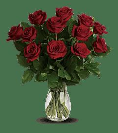 Classic Rose Special