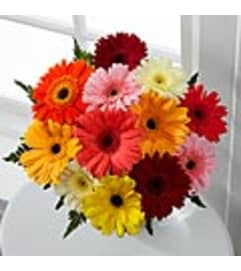 BRIGHT GERBERA DAISY  BOUQUET