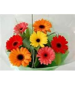 Gerbera Daisies Wrapped