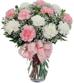 SPECIAL! 40% OFF Carnations in a Vase