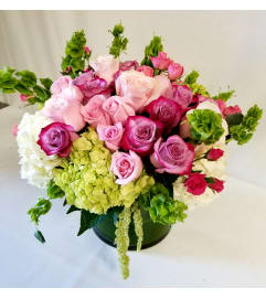 Spring Rose Garden