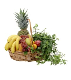 Fabulous Fruit Basket
