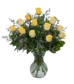 Yellow Rose Beauty