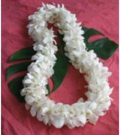 Double White Dendro Orchid Lei