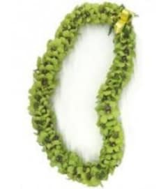 Double Green Dendro lei