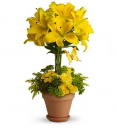 Yellow Fellow Arrangement