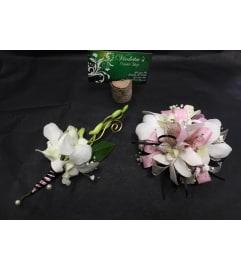Dendrobium Orchids Duo