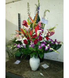 TROPICAL/ EXOTIC ARRANGEMENT